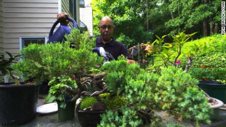 Gardening becomes healing with horticultural therapy