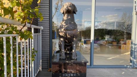 Founded in 2016, the China Dalian Guide Dog Training Center China's first such facility.