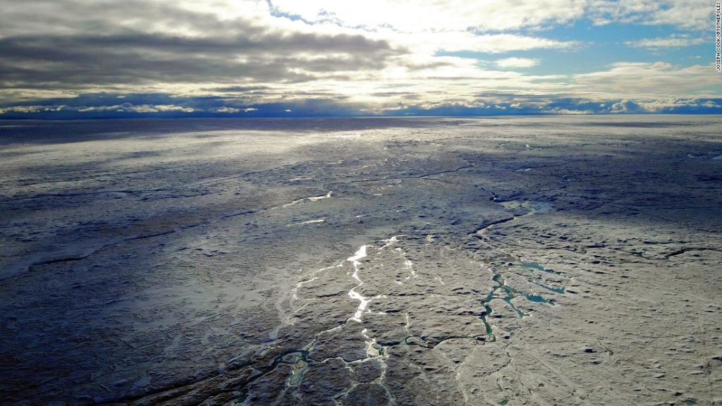 Microscopic life is melting Greenland's ice sheet
