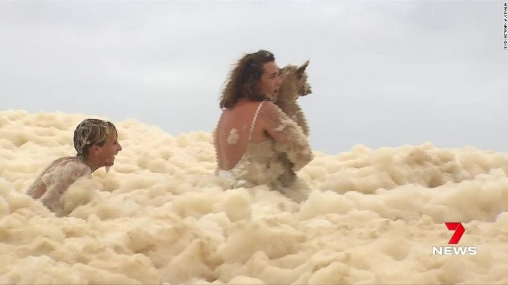 Woman loses dog under massive amounts of sea foam