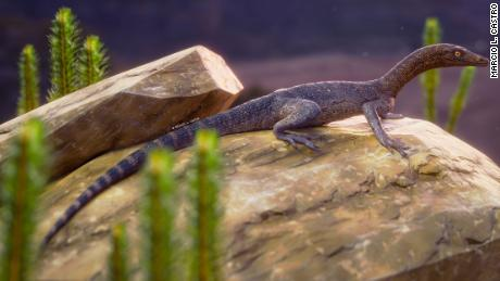 New fossil named after 'Lord of the Rings' character is related to mysterious reptiles