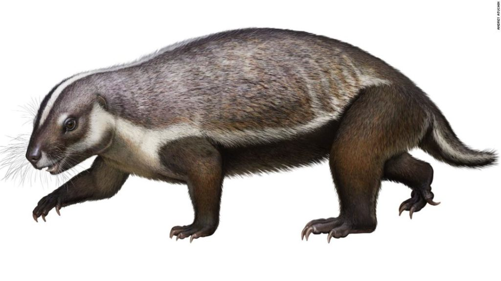 This 'crazy beast' was a weird early mammal that lived among dinosaurs