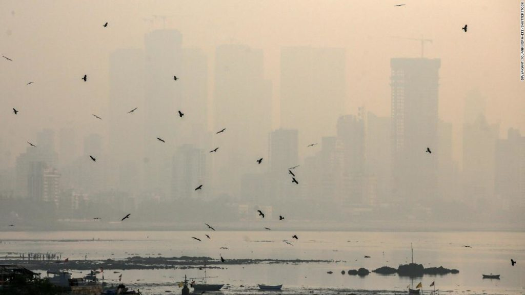 Exposure to air pollution in South Asia linked to pregnancy loss, study finds