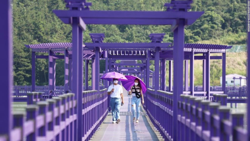 South Korea's all-purple Banwol Island