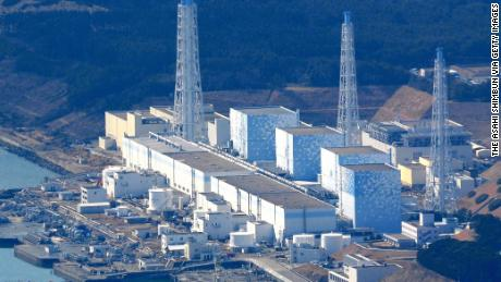 Fukushima water release could change human DNA, Greenpeace warns