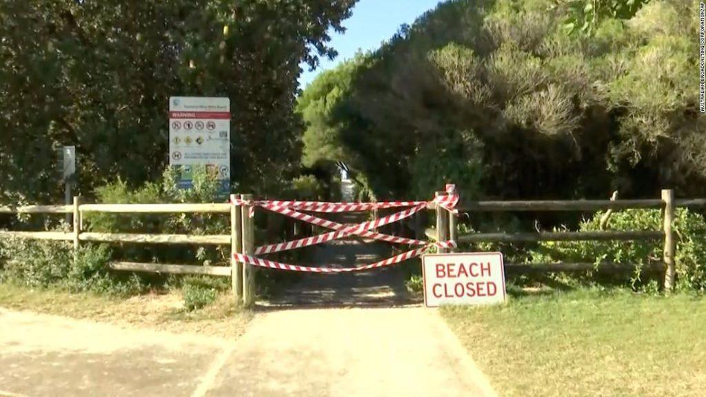 Surfer dies after being bitten by shark in Australia