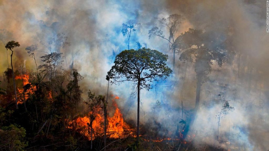 Amazon rainforest drought and deforestation could lead to bad fire season